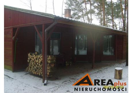 Dom na sprzedaż - Wistka Szlachecka, Włocławek, Włocławski, 33 000 m², 1 500 000 PLN, NET-RDW-DS-107186-2