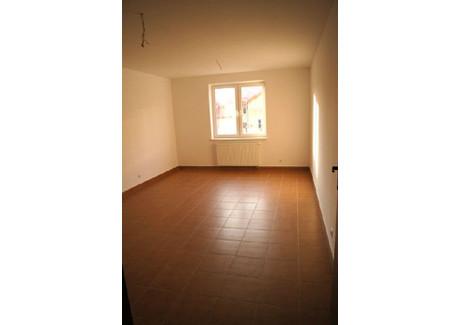 Komercyjne na sprzedaż - Hrubieszów, Hrubieszowski, 90,83 m², 272 500 PLN, NET-RZM-LS-12