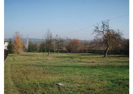 Działka na sprzedaż - Chrusty, Zagnańsk, Kielecki, 1600 m², 176 000 PLN, NET-201612214
