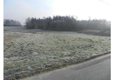 Działka na sprzedaż - Smyków, Konecki, 3500 m², 116 000 PLN, NET-20121202