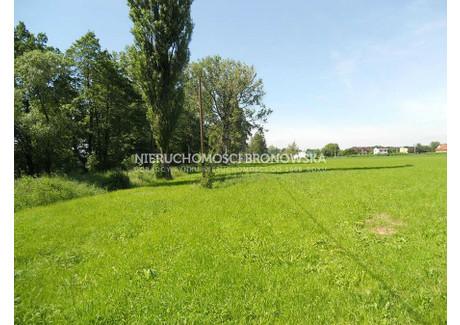 Działka na sprzedaż - Ligota, Bielski, 6593 m², 197 000 PLN, NET-BRN-GS-593