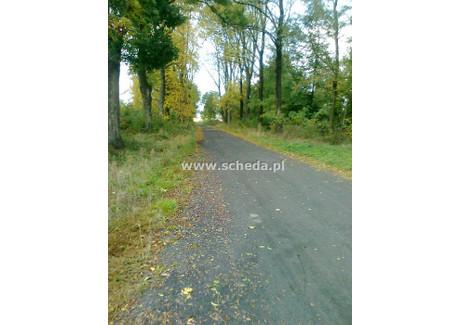 Działka na sprzedaż - Chorzenice, Sulmierzyce, Pajęczański, 2000 m², 60 000 PLN, NET-SCH-GS-2610