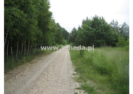 Działka na sprzedaż - Wola Mokrzeska, Przyrów, Częstochowski, 24 700 m², 247 000 PLN, NET-SCH-GS-2748