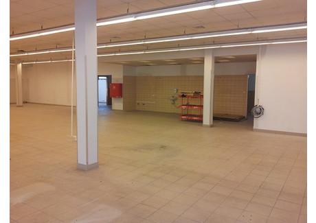 Lokal handlowy do wynajęcia - Opole, 203 m², 7714 PLN, NET-789