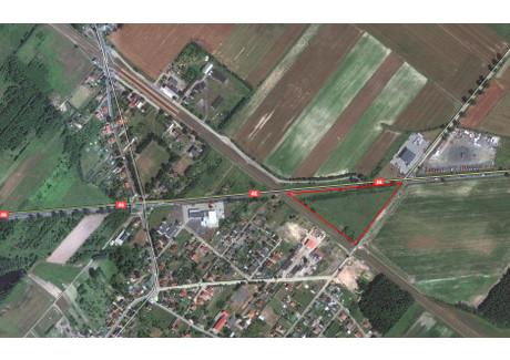 Działka na sprzedaż - Dąbrowa, Opolski, 21 400 m², 650 000 PLN, NET-19