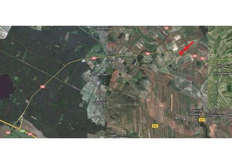Działka na sprzedaż - Karczów, Dąbrowa, Opolski, 42 396 m², 6 359 400 PLN, NET-230
