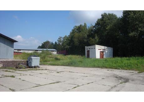 Działka na sprzedaż - Opole, 12 500 m², 3 500 000 PLN, NET-54