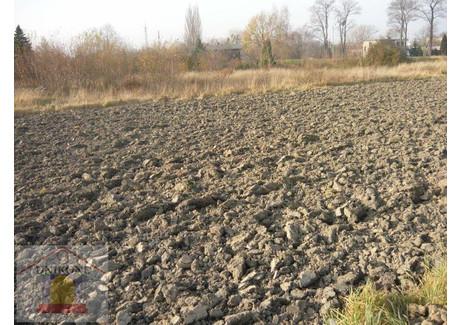 Działka na sprzedaż - Gniotek, Mikołów, 2000 m², 340 000 PLN, NET-6060_1