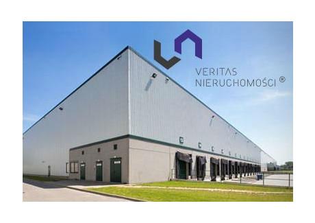 Magazyn do wynajęcia - Będzin, Będziński, 4447 m², 57 811 PLN, NET-VTS-HW-1749