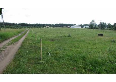 Działka na sprzedaż - Nowa Wieś Ełcka , 3151 m², 160 000 PLN, NET-mkn00000133