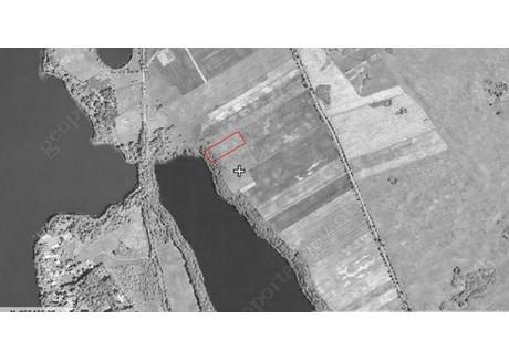 Działka na sprzedaż - Konopki Wielkie, Miłki, Giżycki, 10 000 m², 200 000 PLN, NET-mkn00000185