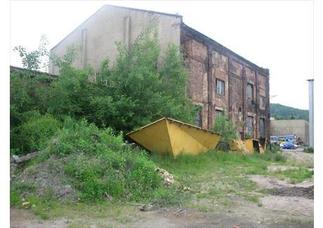 Obiekt na sprzedaż - Bardo, Ząbkowicki, 800 m², 600 000 PLN, NET-65