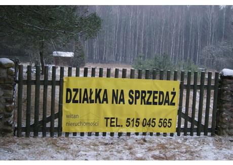 Działka na sprzedaż - Drzewce, Międzychód (gm.), Międzychodzki (pow.), 2766 m², 130 000 PLN, NET-3
