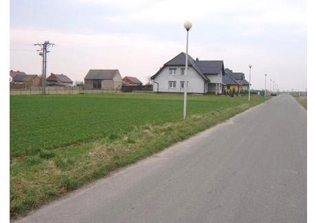 Działka na sprzedaż - Większyce, Reńska Wieś, Kędzierzyńsko-Kozielski, 2000 m², 195 000 PLN, NET-ZUR-GS-256