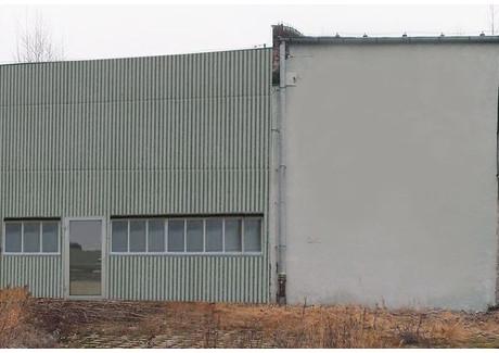 Magazyn do wynajęcia - Skolwin, Szczecin, 1600 m², 19 200 PLN, NET-SCN20728