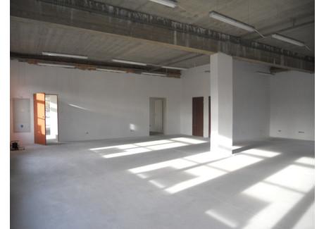 Komercyjne do wynajęcia - Szczecin, 519,7 m², 20 788 PLN, NET-SCN20679