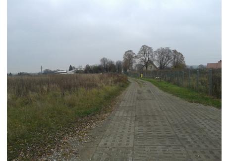 Działka na sprzedaż - Wąwelnica, Dobra (szczecińska), Policki, 1535 m², 230 250 PLN, NET-SCN20687