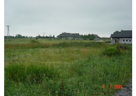 Działka na sprzedaż - Mierzyn, Dobra (szczecińska), Policki, 9684 m², 1 065 240 PLN, NET-SCN20350
