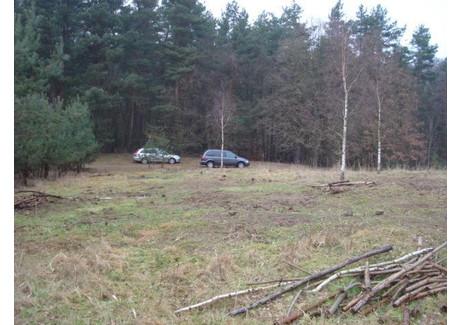 Działka na sprzedaż - Pilchowo, Police, Policki, 2000 m², 478 000 PLN, NET-SCNS1453