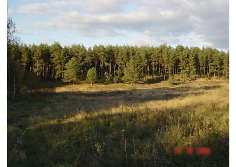 Działka na sprzedaż - Pilchowo, Police, Policki, 1045 m², 334 400 PLN, NET-SCN20731