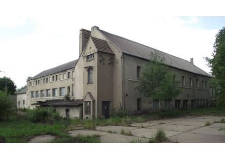 Lokal na sprzedaż - Recz, Choszczeński, 1430 m², 800 000 PLN, NET-INB00265