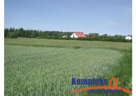 Działka na sprzedaż - Gogolice, Wolin, Kamieński, 16 400 m², 492 000 PLN, NET-KOM23351