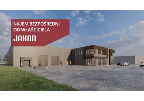 Jakon Poznań Niepruszewo ul. Świerkowa Buk | Oferty.net