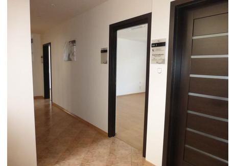 Biuro do wynajęcia - 11-go Listopada Xv-Lecie, Radom, 80 m², 3300 PLN, NET-809