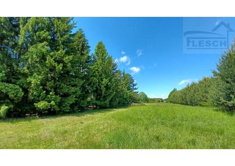 Działka na sprzedaż - Krakowiany, Nadarzyn, Pruszkowski, 5530 m², 663 600 PLN, NET-1064/1807/OGS
