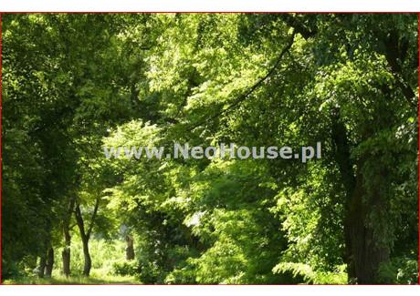 Działka na sprzedaż - Zawady, Kampinos, Warszawski, 13 600 m², 544 000 PLN, NET-GS-63810
