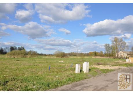 Działka na sprzedaż - Cisy, Malbork (gm.), Malborski (pow.), 1762 m², 105 000 PLN, NET-CND3