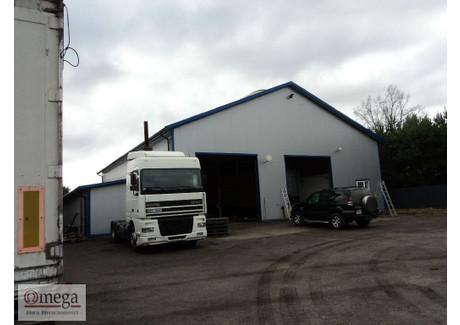 Obiekt na sprzedaż - Gręzów, Kotuń, Siedlecki, 517 m², 1 900 000 PLN, NET-OMG-BS-45022