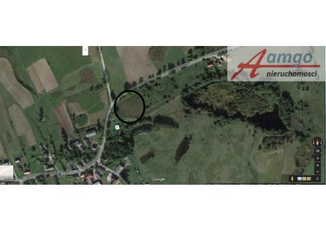 Działka na sprzedaż - Nowa Wieś Przywidzka, Przywidz, Gdański, 5800 m², 178 000 PLN, NET-2/6310/OGS
