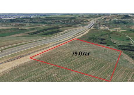 Działka na sprzedaż - Dębicka Rzeszów, 7900 m², 908 500 PLN, NET-617/3256/OGS
