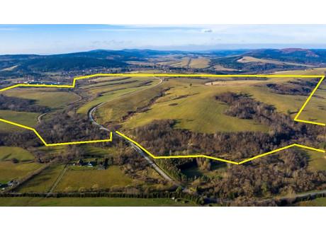 Działka na sprzedaż - Komańcza, Sanocki, 1 453 900 m², 5 524 820 PLN, NET-242/3256/OGS