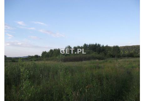 Działka na sprzedaż - Ściejowice, Krakowski, 5000 m², 50 000 PLN, NET-GS-10497-2
