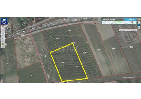 Działka na sprzedaż - Janówek, Grójec, Grójecki, 22 000 m², 990 000 PLN, NET-184/3396/OGS