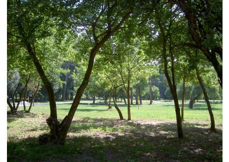 Działka na sprzedaż - Nadrzeczna Konstancin-Jeziorna, Piaseczyński, 2009 m², 990 000 PLN, NET-2792