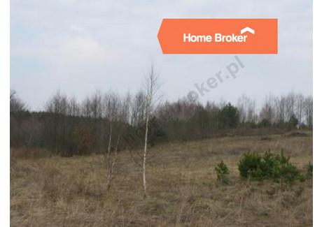 Działka na sprzedaż - Kleszczewo, 4400 m², 180 000 PLN, NET-54104