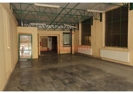 Komercyjne do wynajęcia - Centrum, Opole, 365 m², 13 900 PLN, NET-11833