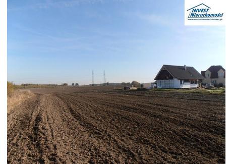 Działka na sprzedaż - Stare Bielice, Biesiekierz, Koszaliński, 1043 m², 67 795 PLN, NET-1903008