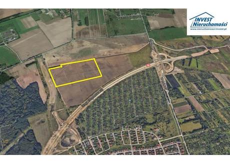 Działka na sprzedaż - Unii Europejskiej, Koszalin, Koszaliński, 150 000 m², 4 207 500 PLN, NET-1903457