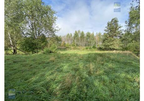 Działka na sprzedaż - Drzymały Imielin, Bieruńsko-Lędziński (pow.), 11 500 m², 999 900 PLN, NET-219