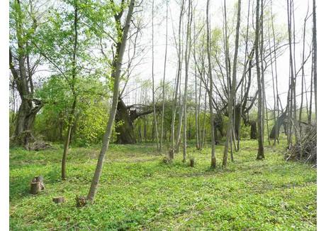 Działka na sprzedaż - Rajszew, Jabłonna, Legionowski, 3000 m², 150 000 PLN, NET-140