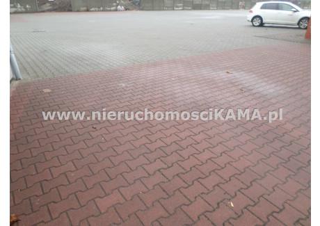 Działka do wynajęcia - Bielsko-Biała, Bielsko-Biała M., 500 m², 1500 PLN, NET-NBK-GW-1837
