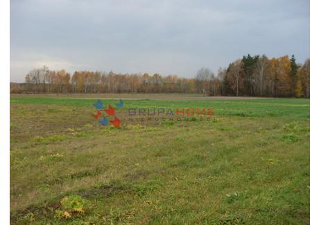 Działka na sprzedaż - Grochowa, Piaseczno, Piaseczyński, 2500 m², 350 000 PLN, NET-923/2566/OGS