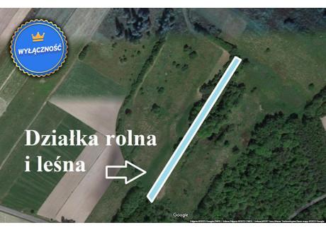 Działka na sprzedaż - Ostrów Lubelski, Kolechowice Kolonia, Ostrów Lubelski, Lubartowski, 26 500 m², 53 000 PLN, NET-LER-GS-1061