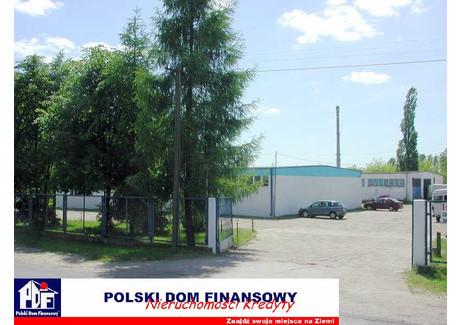 Biuro do wynajęcia - Nowy Dwór Mazowiecki, Nowodworski, 450 m², 6300 PLN, NET-324869