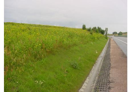 Działka na sprzedaż - OBWODOWA Jankowo Gdańskie, Gdański, 20 000 m², 2 600 000 Euro (11 752 000 PLN), NET-IB0694