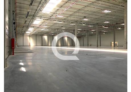 Magazyn do wynajęcia - Tczew, Tczewski, 2430 m², 26 254 PLN, NET-QRC-HW-5656